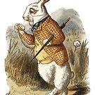 White Rabbit - Alice in Wonderland by Hannah Sterry
