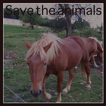 horses by mlgkats