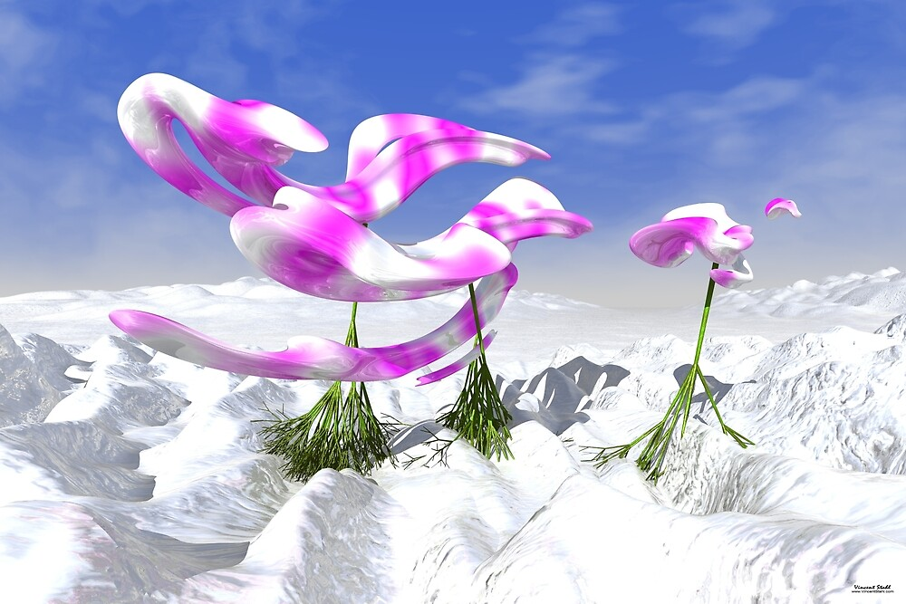 Orchids On Ice by stahlworks