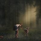 Ruby and the Deer by Tricia Winwood