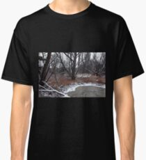 Pond In The Woods II Classic T-Shirt