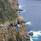 Cape Pillar by Harry Oldmeadow