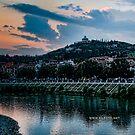 Hillside above Verona, Italy by L Lee McIntyre