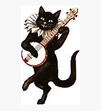 Vintage Cat Playing Banjo Photographic Print