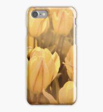 Tulip flowers in the garden - faded iPhone Case/Skin