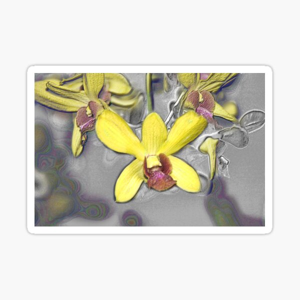 Oil Slicked Orchids Sticker