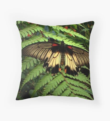 Butterfly and Fern Throw Pillow