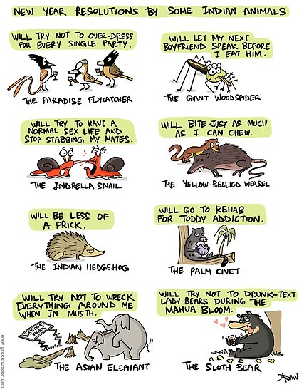 Quot New Year Resolutions By Some Indian Animals Quot Posters By