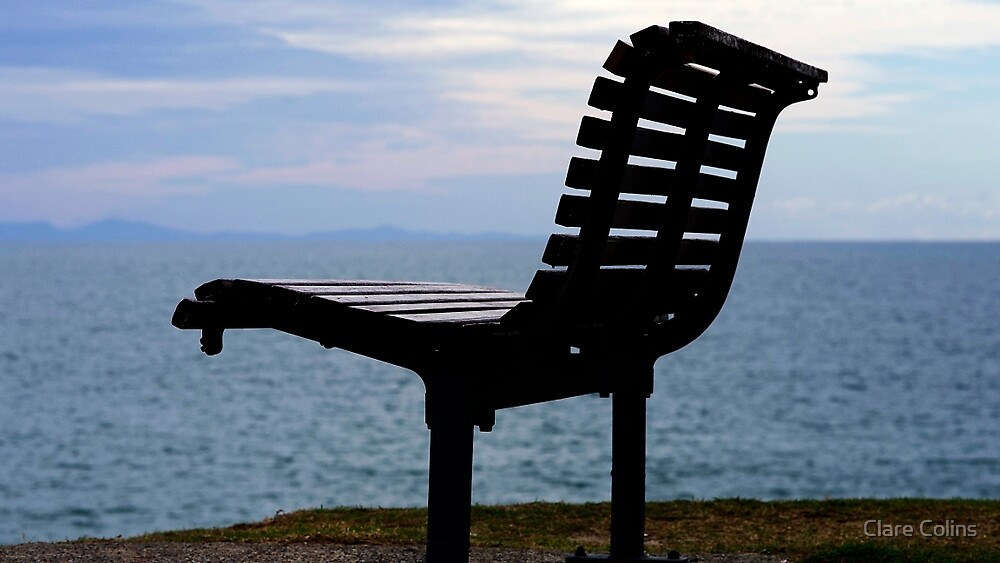 The Thinking Seat by Clare Colins