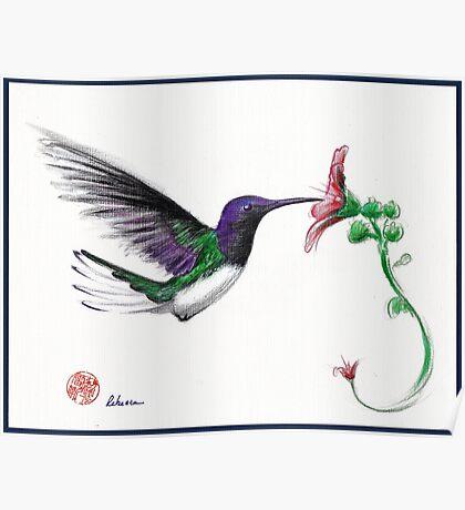 Precious - Hummingbird mixed media painting/drawing Poster