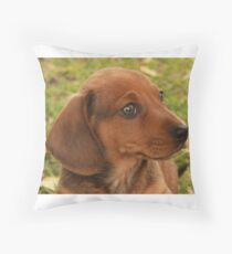 Zorro's First Outside Adventure Throw Pillow