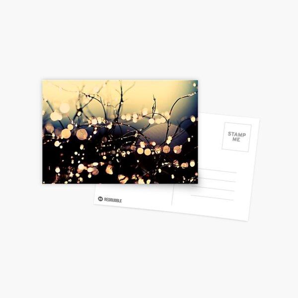Where wishes come true. Postcard