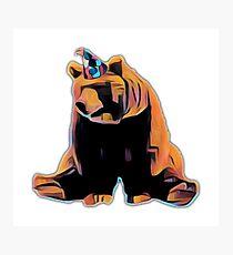 Birthday Bear  Photographic Print