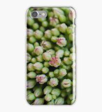 Burgeon field iPhone Case/Skin