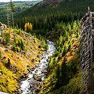 Tumalo Creek by Richard Bozarth