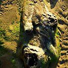 Faces/Oregon by Richard Bozarth