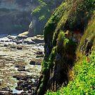 Cliffy/Oregon by Richard Bozarth