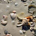 washed away by Kim Stelfox