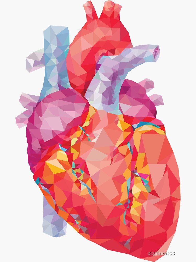polygonal human heart illustration by zizimentos