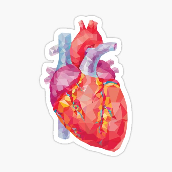 polygonal human heart illustration Sticker