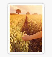 Walking through wheat field. Sticker