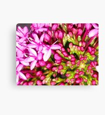 Dainty Pink Flower Canvas Print