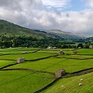 Swaledale Stone Barns by Trevor Kersley
