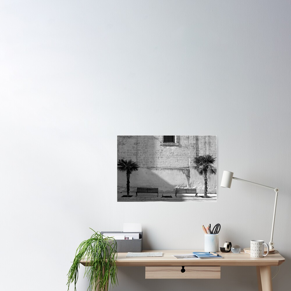Monochrome bench and trees, Puglia Poster