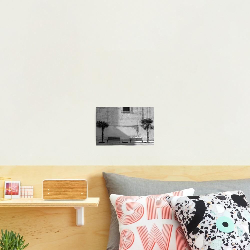 Monochrome bench and trees, Puglia Photographic Print
