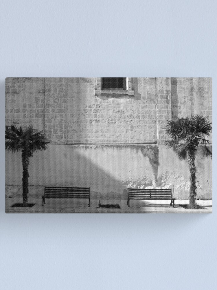 Alternate view of Monochrome bench and trees, Puglia Canvas Print
