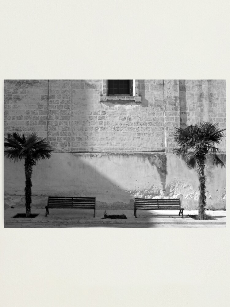 Alternate view of Monochrome bench and trees, Puglia Photographic Print