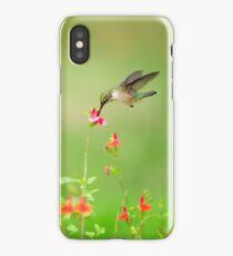 HUMMINGBIRD iPhone Case/Skin