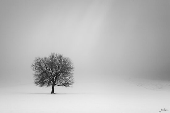 Solitude by redtree