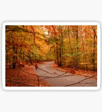 Autumn In Holmdel Park Sticker