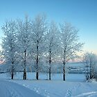 Winter Trees I by Ludwig Wagner