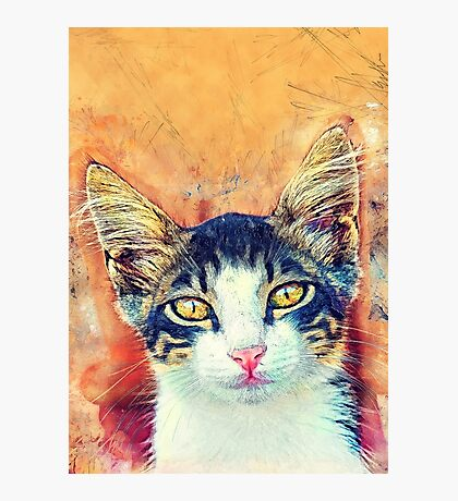 Cat Jacky Photographic Print