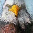 Eagle Eyes by Marcie Wolf-Hubbard