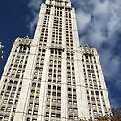 Classic Woolworth Building, Lower Manhattan, New York City by lenspiro