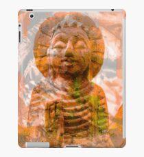 Ra iPad Case/Skin