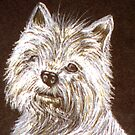 West Highland White Terrier by sharpie