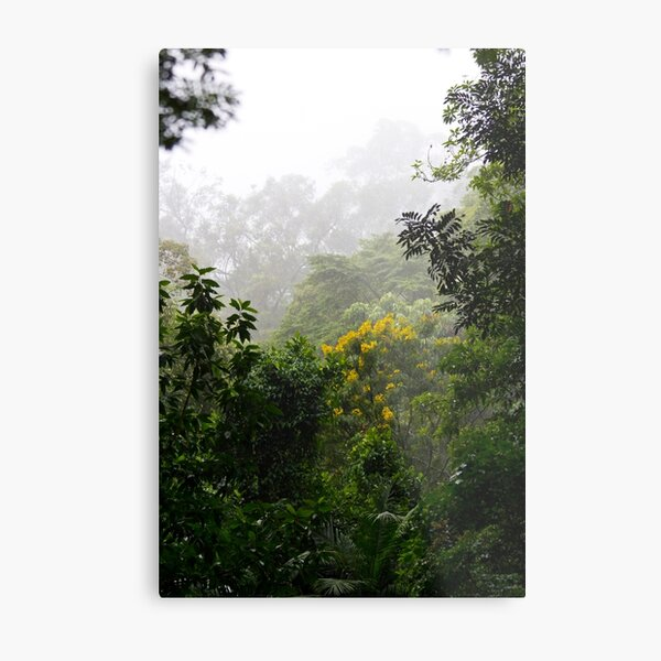Insane Tropical Forest   Metal Print