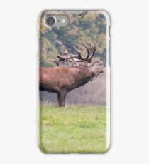 Bellowing Red Deer, Stag iPhone Case/Skin