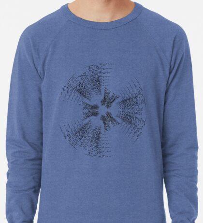 02-04-2010-0025 Lightweight Sweatshirt