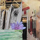water lily by Susan Ringler