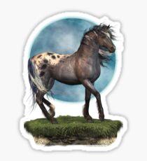 Storm .. an appaloosa stallion Sticker