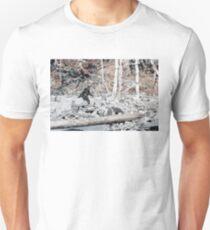 Bigfoot Caught On Camera!!! Unisex T-Shirt