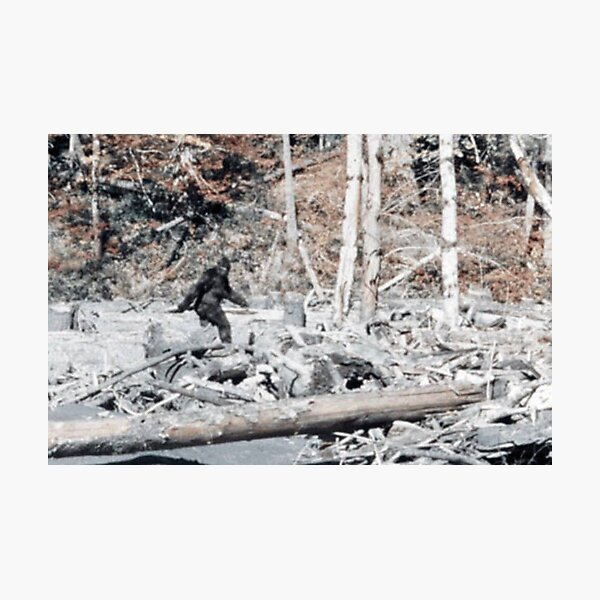 Bigfoot Caught On Camera!!! Photographic Print