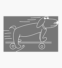 Henry Hound the cool skateboarding dog Photographic Print