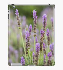 Lavender purple flowers growing. iPad Case/Skin