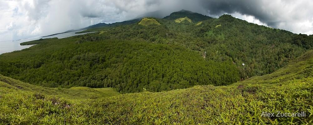 Dolen Uh Panorama - Pohnpei, Micronesia by Alex Zuccarelli